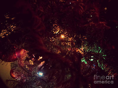 Photograph - Christmas Tree Series 7 by Serena Ballard