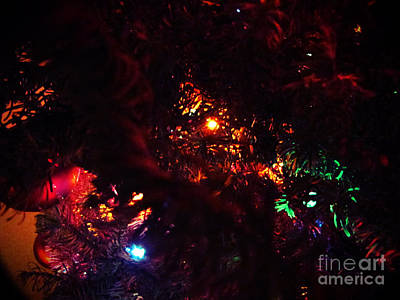 Photograph - Christmas Tree Series 8 by Serena Ballard