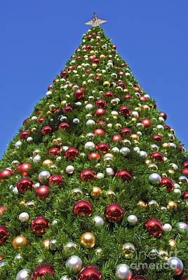 Photograph - Christmas Tree With Decorations by David Zanzinger