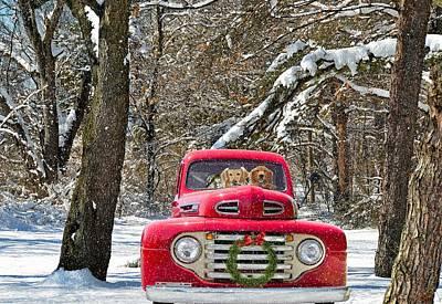 Snowy Golden Retriever Photograph - Christmas Truck by Maria Dryfhout