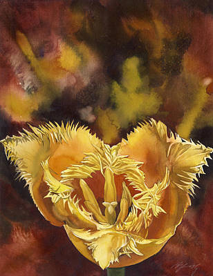Christmas Tulip Art Print by Alfred Ng