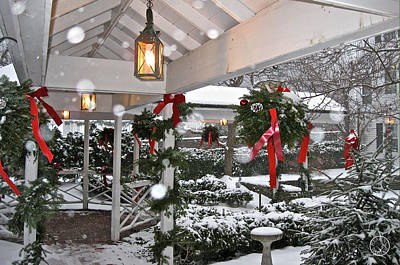 Photograph - Christmas Walkway In The Snow by Healing Woman