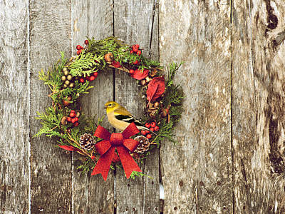 Christmas Wreath. Art Print