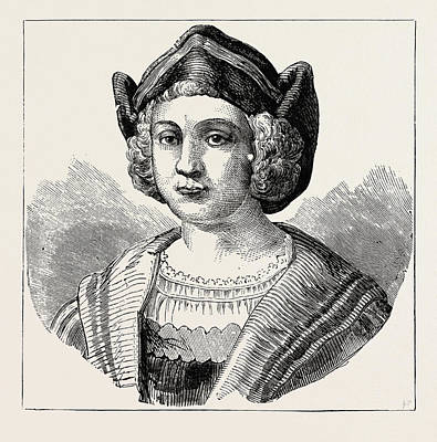 Christopher Columbus Drawing - Christopher Columbus by English School