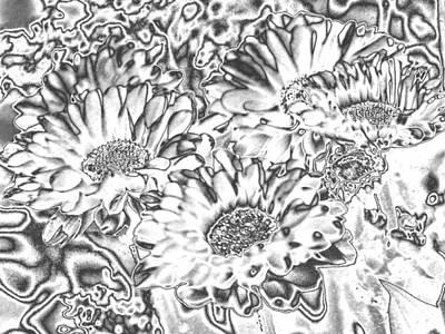 Photograph - Chromed Flowers by Belinda Lee