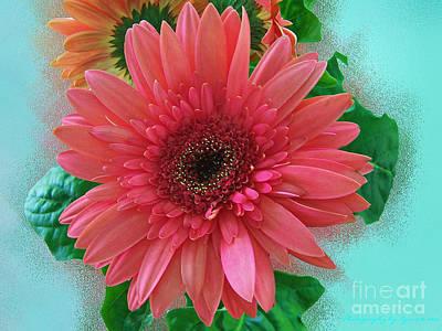 Photograph - Chrysanthemum by Gena Weiser