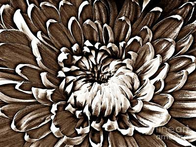 Photograph - Chrysanthemum In Sepia by Sarah Loft