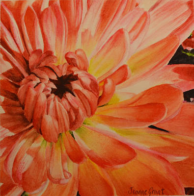 Painting - Chrysanthemum by Joanne Grant