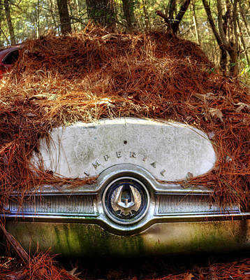 Pine Needles Photograph - Chrysler Imperial by Greg Mimbs