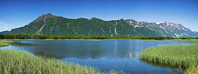 Chugach Mountains Photograph - Chugach Mountains At Prince William by Panoramic Images