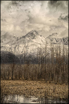 Photograph - Chugach Mountains In Storm by Erika Fawcett
