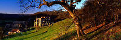 Bare Trees Photograph - Church On A Landscape, Rievaulx Abbey by Panoramic Images