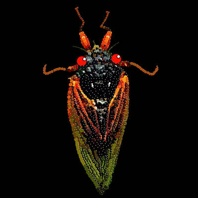 Digital Art - Cicada In Black by R  Allen Swezey