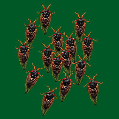 Digital Art - Cicadas In Green by R  Allen Swezey