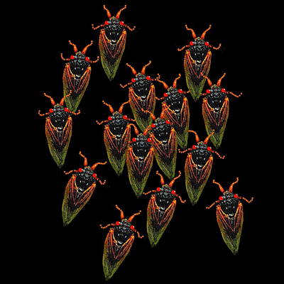 Digital Art - Cicadas by R  Allen Swezey
