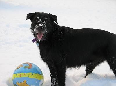 Ciera In The Snow Original