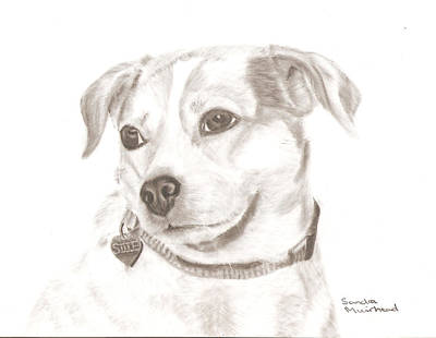 Drawing - Cille  by Sandra Muirhead