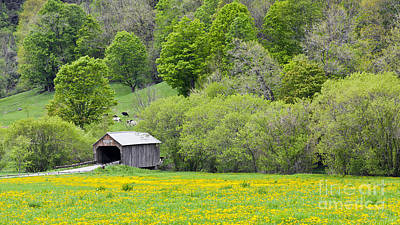 Photograph - Cilley Covered Bridge by Alan L Graham