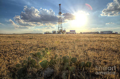Oil Photograph - Cim001-25 by Cooper Ross