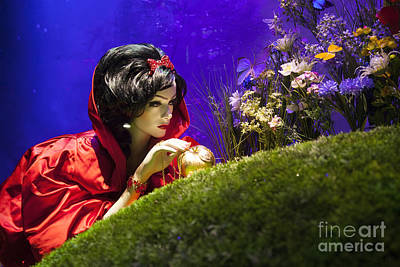 Upscale Photograph - Snow White by Brian Jannsen