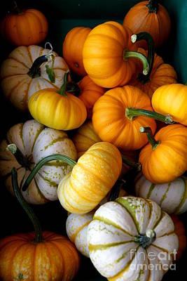 Farmstand Photograph - Cinderella Pumpkin Pile by Kerri Mortenson