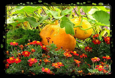 Autumn Scene Photograph - Cinderella's Carriage by Marilyn Smith