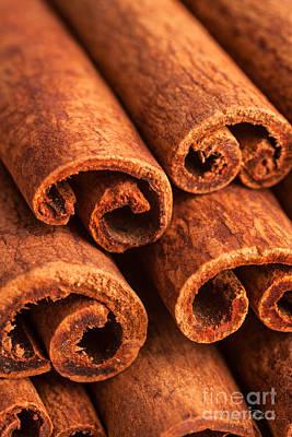 Photograph - Cinnamon - Cinnamomum by Iris Richardson