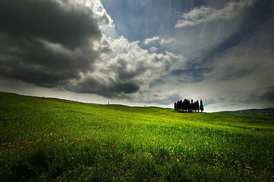 Photograph - Cipressi by John Galbo