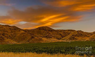 Cornfield Photograph - Circle Of Corn At Sunrise by Robert Bales