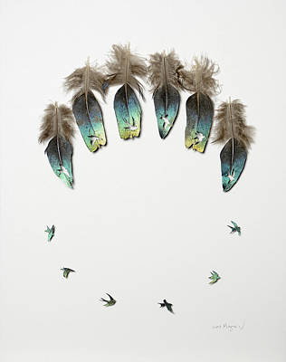 Shadowbox Mixed Media - Circle Of Flight by Chris Maynard