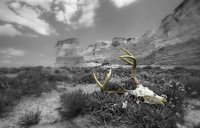 Artistic Photograph - Circle Of Life by Garett Gabriel