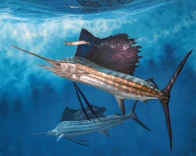 Salt Water Game Fish Painting - Circling The Bait by Don  Ray