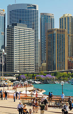 Photograph - Circular Quay - Sydney - Australia - With Skyscrapers And A Hint Of Purple Jacaranda by David Hill