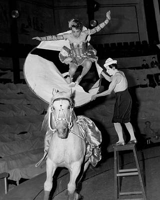 Tent Photograph - Circus Horse Stunt by Retro Images Archive