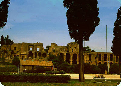 Photograph - Circus Maximus by Donna Walsh