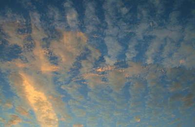 Photograph - Cirrocumulus Morning by Ellen Henneke