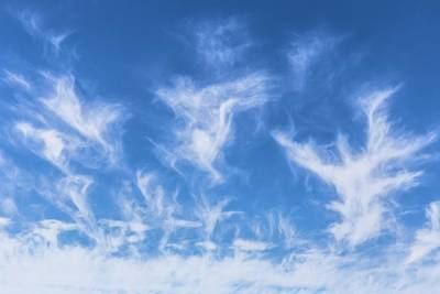 Cirrus Cloud Formation Art Print by Alfred Pasieka