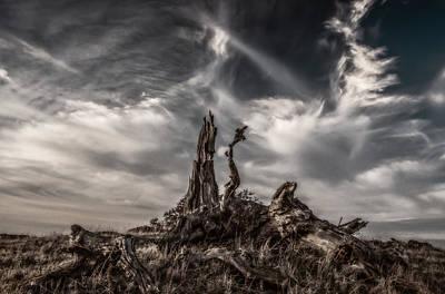 Cirrus Clouds At Sunset  Art Print by Marc Crumpler