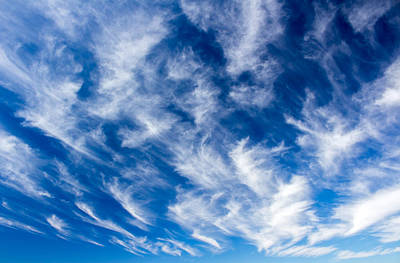 Photograph - Cirrus by Nicholas Blackwell
