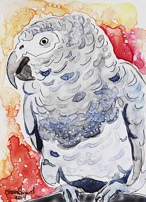 Bright Watercolor Portrait Bright Watercolor Painting - African Grey by Shaina Stinard