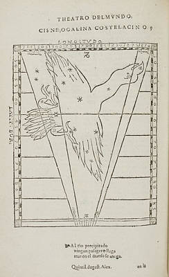 Que Photograph - Cisne Star Constellation by British Library