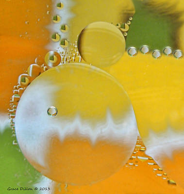 Photograph - Citrus Bubbles by Grace Dillon