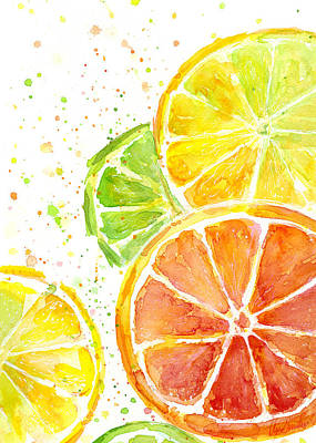 Citrus Fruit Watercolor Print by Olga Shvartsur