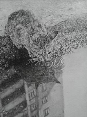 City Kitty Print by Frances Vincent