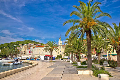 Photograph - City Of Split Palm Waterfront  by Brch Photography
