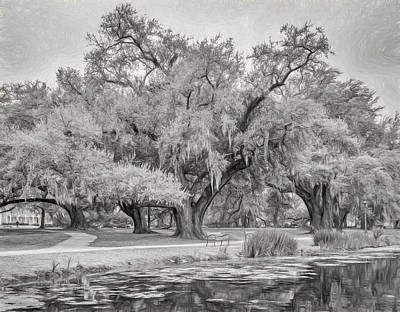 City Park Giants - Paint Bw Art Print