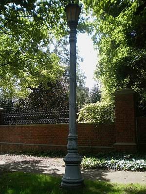 Target Threshold Nature Royalty Free Images - City Street Lamp Royalty-Free Image by Michaela Vasquez