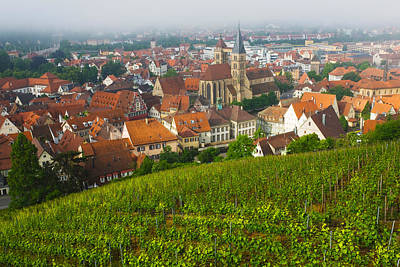 Winemaking Photograph - City Viewed From Vineyard by Panoramic Images