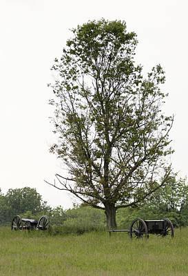 Photograph - Civil War Canon 6 by David Lester