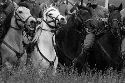 Photograph - Civil War Horses by David Lester